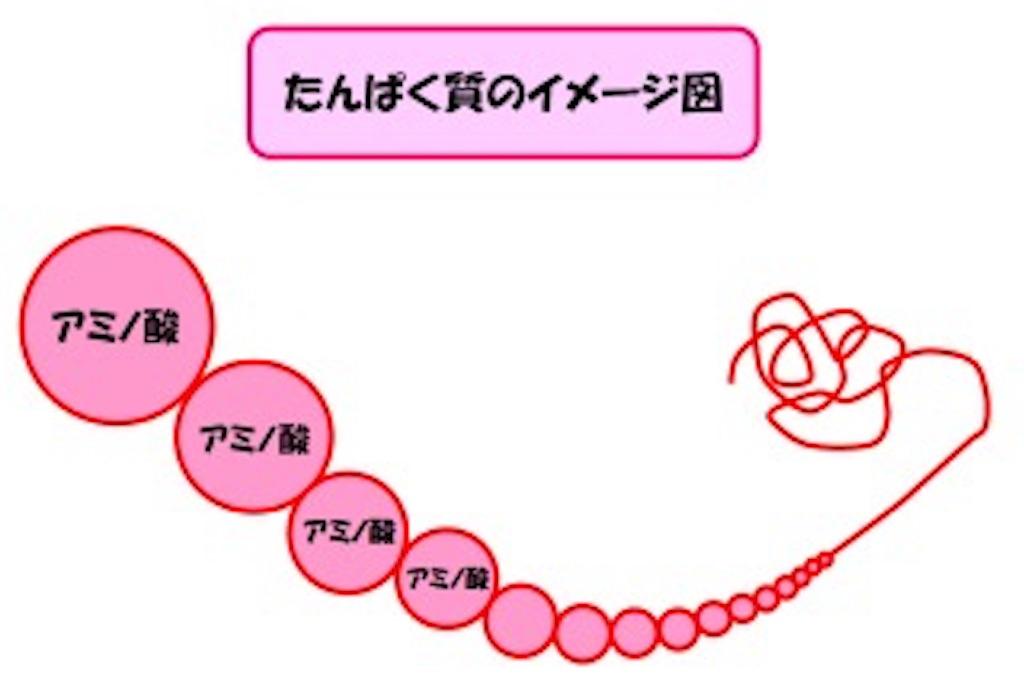 f:id:tatsuki52510:20181024103925j:image