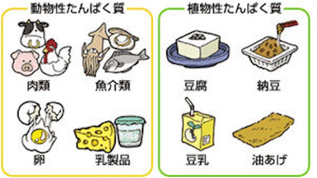 f:id:tatsuki52510:20181026133102j:image