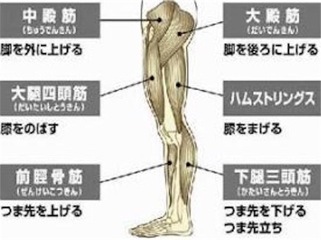 f:id:tatsuki52510:20181107134058j:image