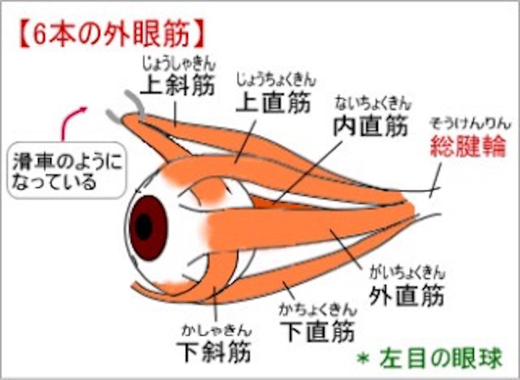 f:id:tatsuki52510:20181114215446j:image