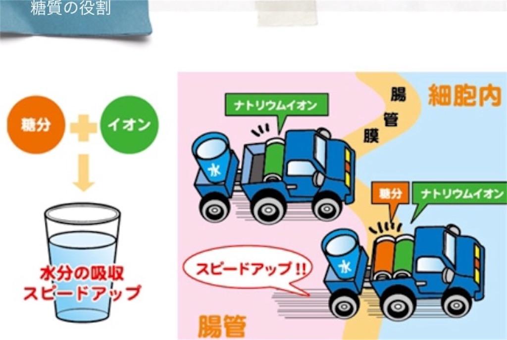 f:id:tatsuki52510:20190529220322j:image