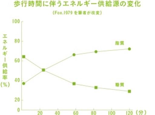 f:id:tatsuki52510:20200202233946j:image