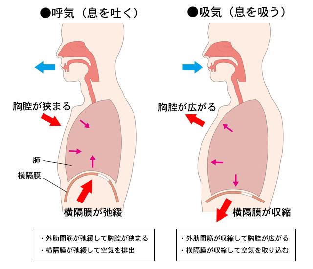 f:id:tatsuki52510:20201006013924j:plain