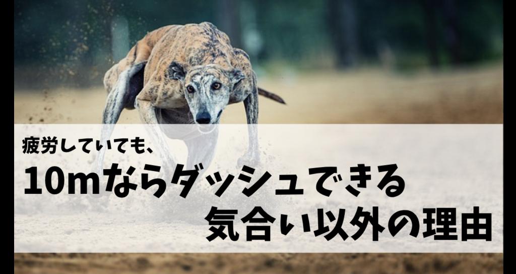f:id:tatsuki_11_13:20180729095030p:plain