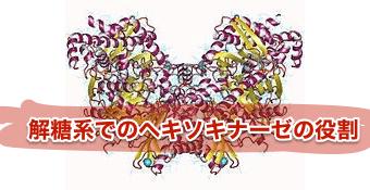 f:id:tatsuki_11_13:20180814010835p:plain