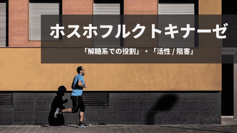 f:id:tatsuki_11_13:20180817004926p:image