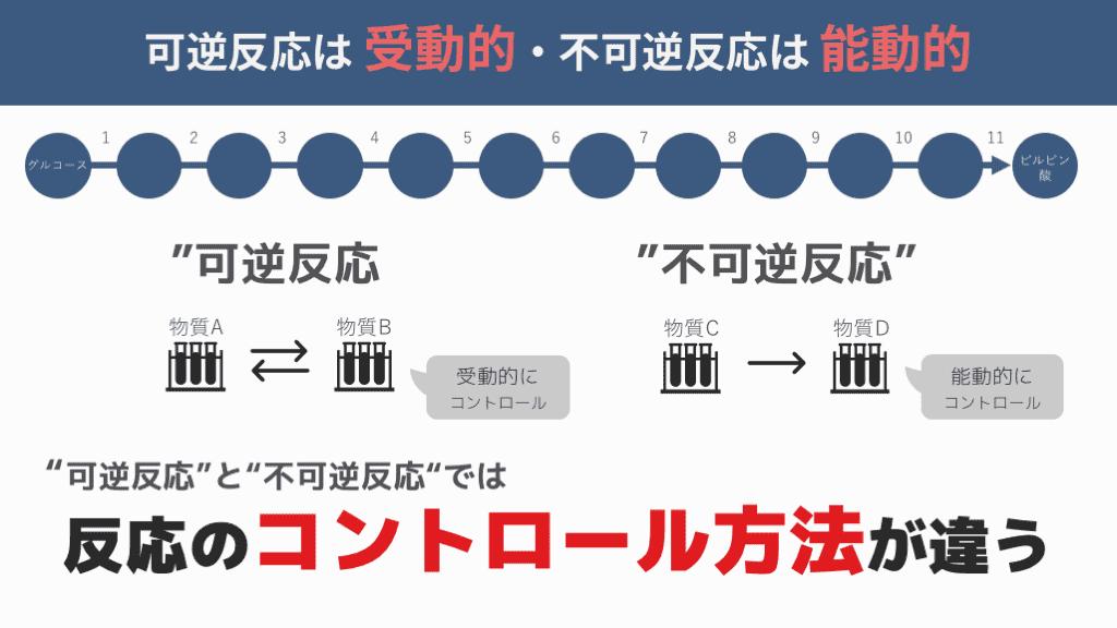 f:id:tatsuki_11_13:20180817082842p:plain
