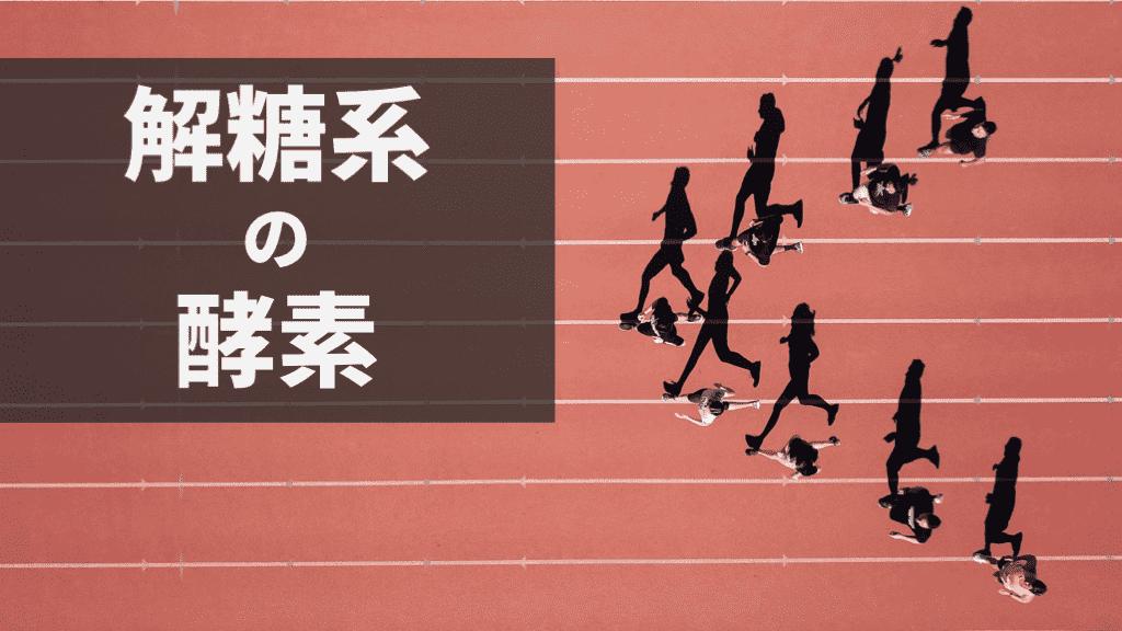 f:id:tatsuki_11_13:20180817084209p:plain