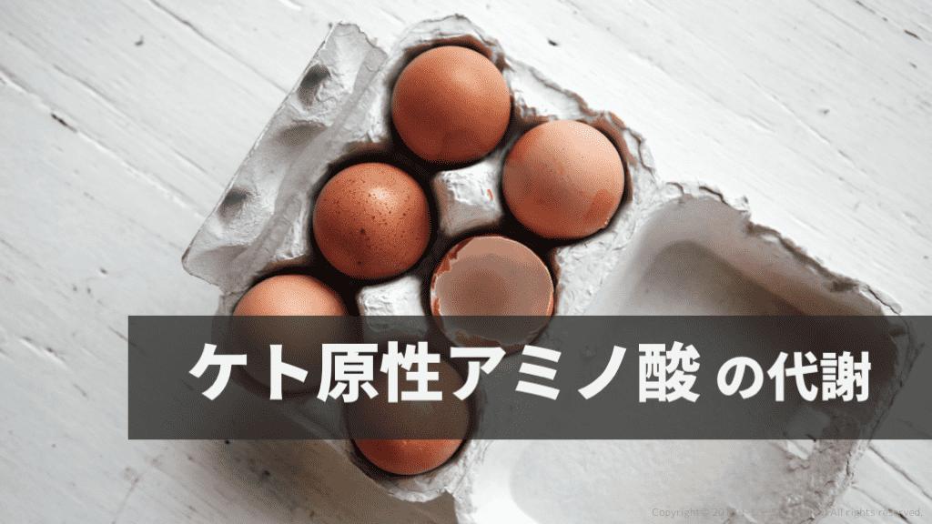 f:id:tatsuki_11_13:20180822233532p:plain