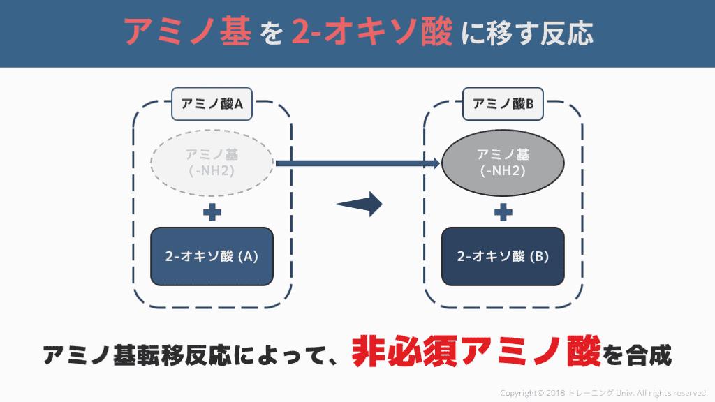 f:id:tatsuki_11_13:20180823094804p:plain