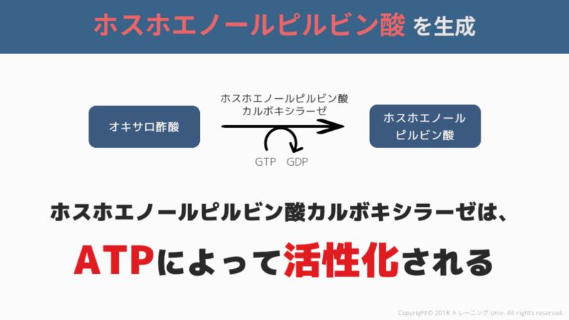 f:id:tatsuki_11_13:20180824105456p:image