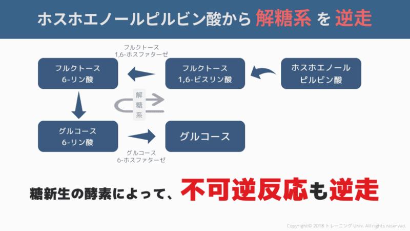f:id:tatsuki_11_13:20180824105501p:image