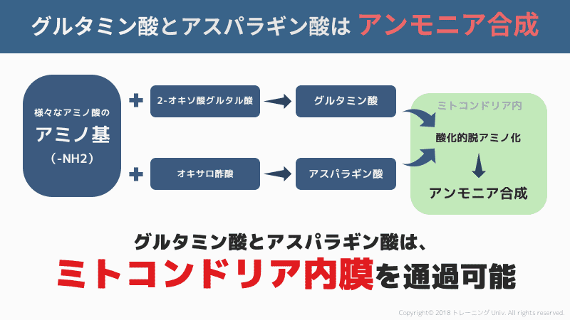 f:id:tatsuki_11_13:20180828011627p:plain