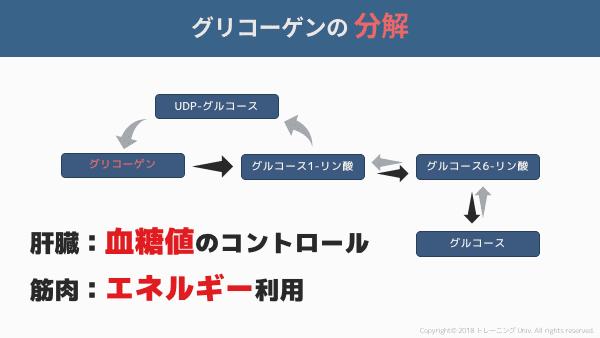 f:id:tatsuki_11_13:20180905004213p:plain