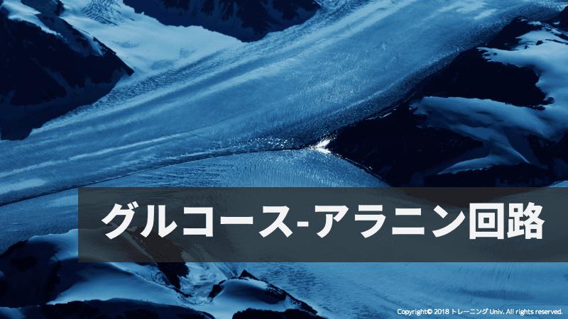 f:id:tatsuki_11_13:20180906061735p:image