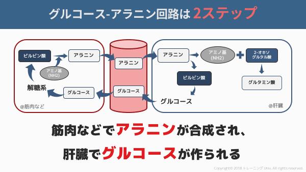 f:id:tatsuki_11_13:20180906061745p:image