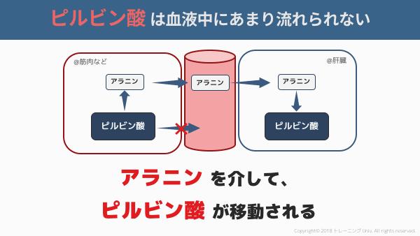 f:id:tatsuki_11_13:20180906061748p:image