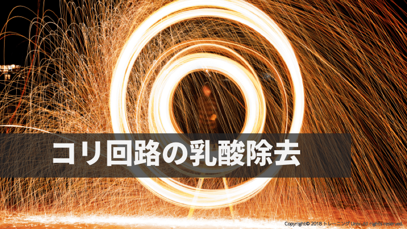 f:id:tatsuki_11_13:20180908022042p:image
