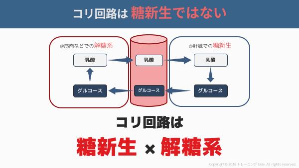 f:id:tatsuki_11_13:20180908022050p:image