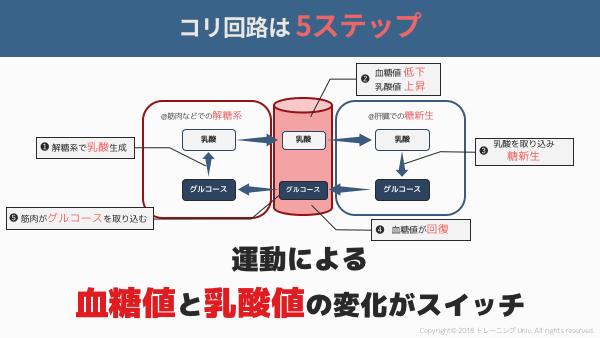 f:id:tatsuki_11_13:20180908022053p:image