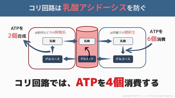 f:id:tatsuki_11_13:20180909162013p:plain