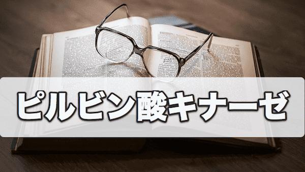 f:id:tatsuki_11_13:20180924223650p:plain