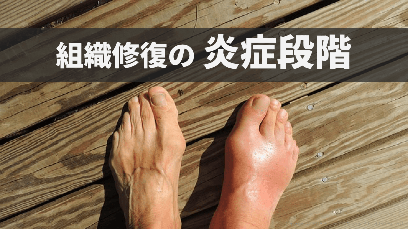 f:id:tatsuki_11_13:20180927234802p:plain