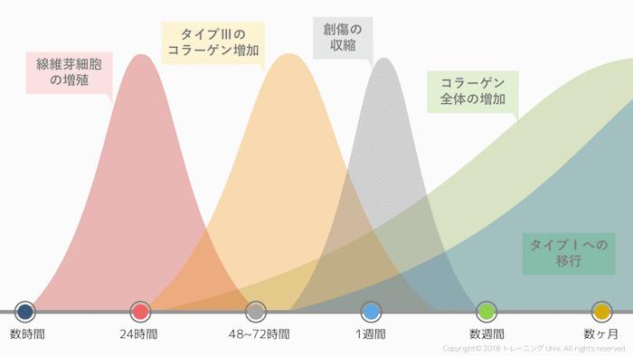 f:id:tatsuki_11_13:20180928010305p:image