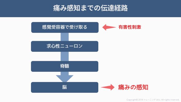 f:id:tatsuki_11_13:20181011022548p:image