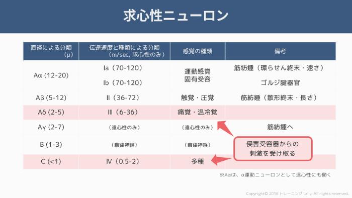 f:id:tatsuki_11_13:20181011022552p:image