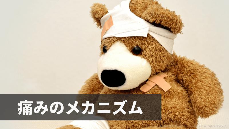 f:id:tatsuki_11_13:20181011022614p:image