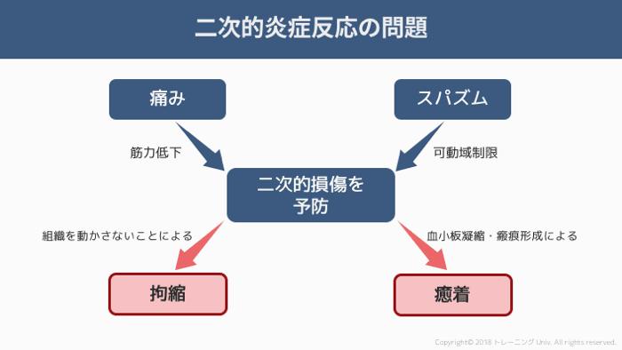 f:id:tatsuki_11_13:20181011024118p:image