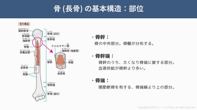 f:id:tatsuki_11_13:20181018071335p:image