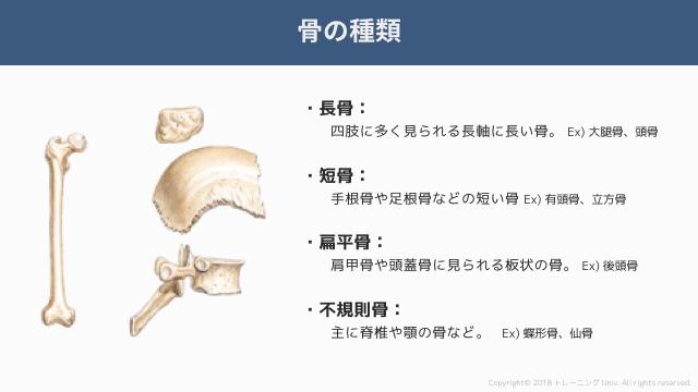 f:id:tatsuki_11_13:20181018071340p:image