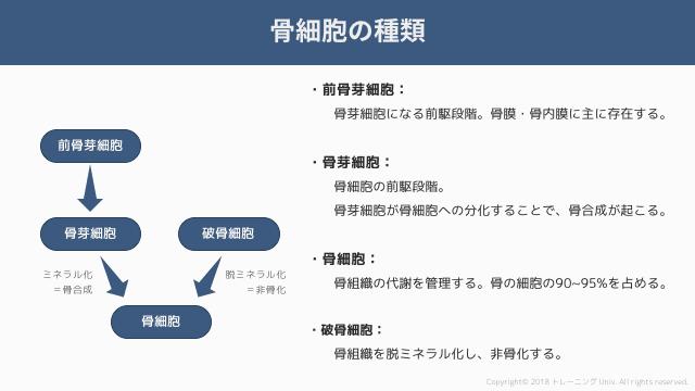 f:id:tatsuki_11_13:20181020235807p:image