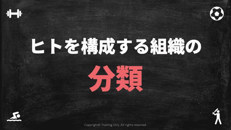 f:id:tatsuki_11_13:20181102024857p:image