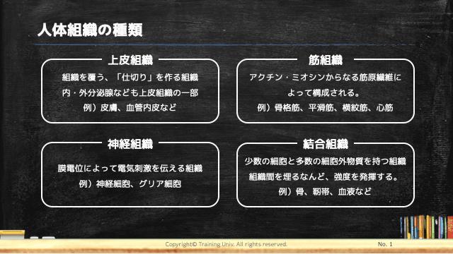 f:id:tatsuki_11_13:20181102024906p:image