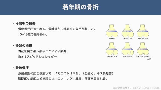 f:id:tatsuki_11_13:20181106065420p:image