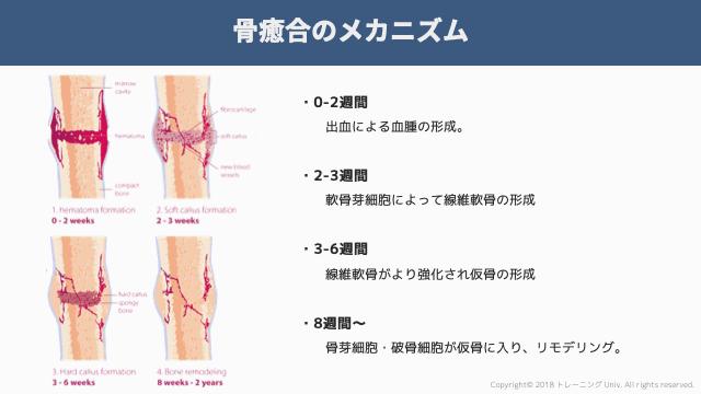 f:id:tatsuki_11_13:20181106070615p:image