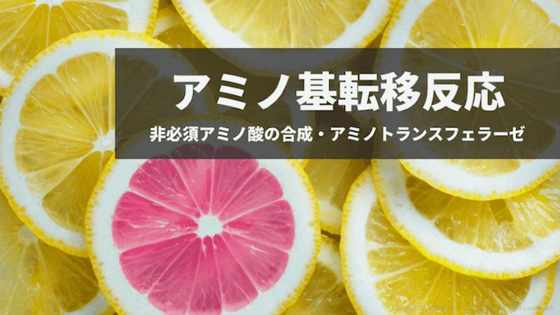f:id:tatsuki_11_13:20181112062933p:plain
