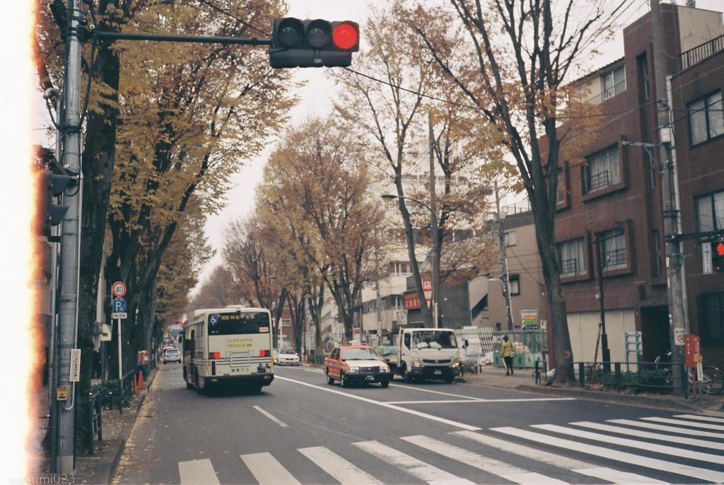 f:id:tatsumi023:20190307142804j:plain