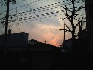 f:id:tatsumine:20050327191750:image