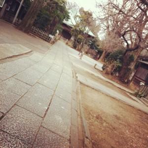 f:id:tatsumine:20120205181839j:image