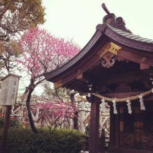 f:id:tatsumine:20120301171847j:image