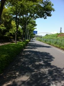 f:id:tatsumine:20120527124219j:image