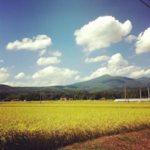f:id:tatsumine:20120919105548j:image