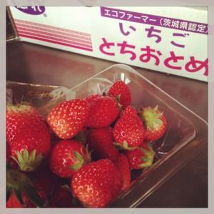 f:id:tatsumine:20130318110714j:image