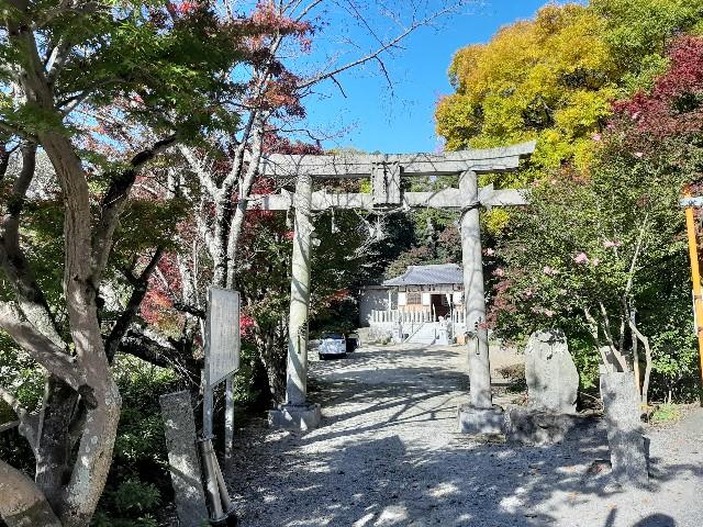 f:id:tatsumitatsu:20201115203952j:image