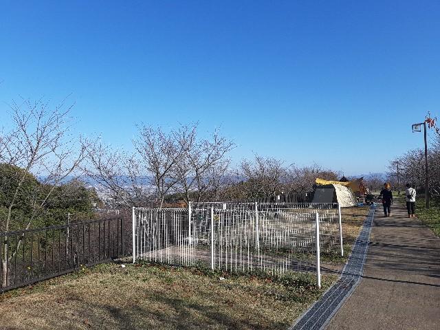 f:id:tatsumitatsu:20201115205502j:image
