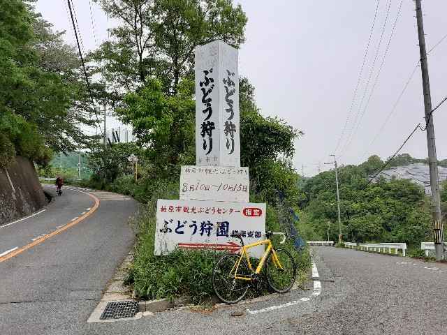 f:id:tatsumitatsu:20210508214431j:image